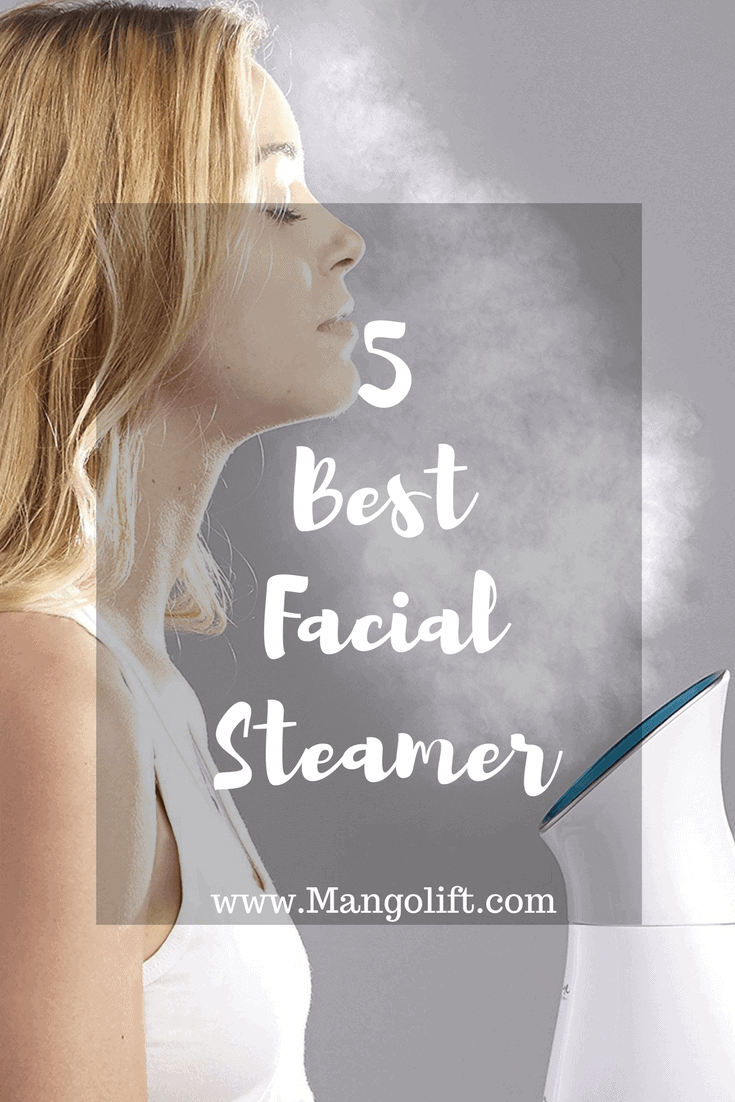 top 5 facial steamer